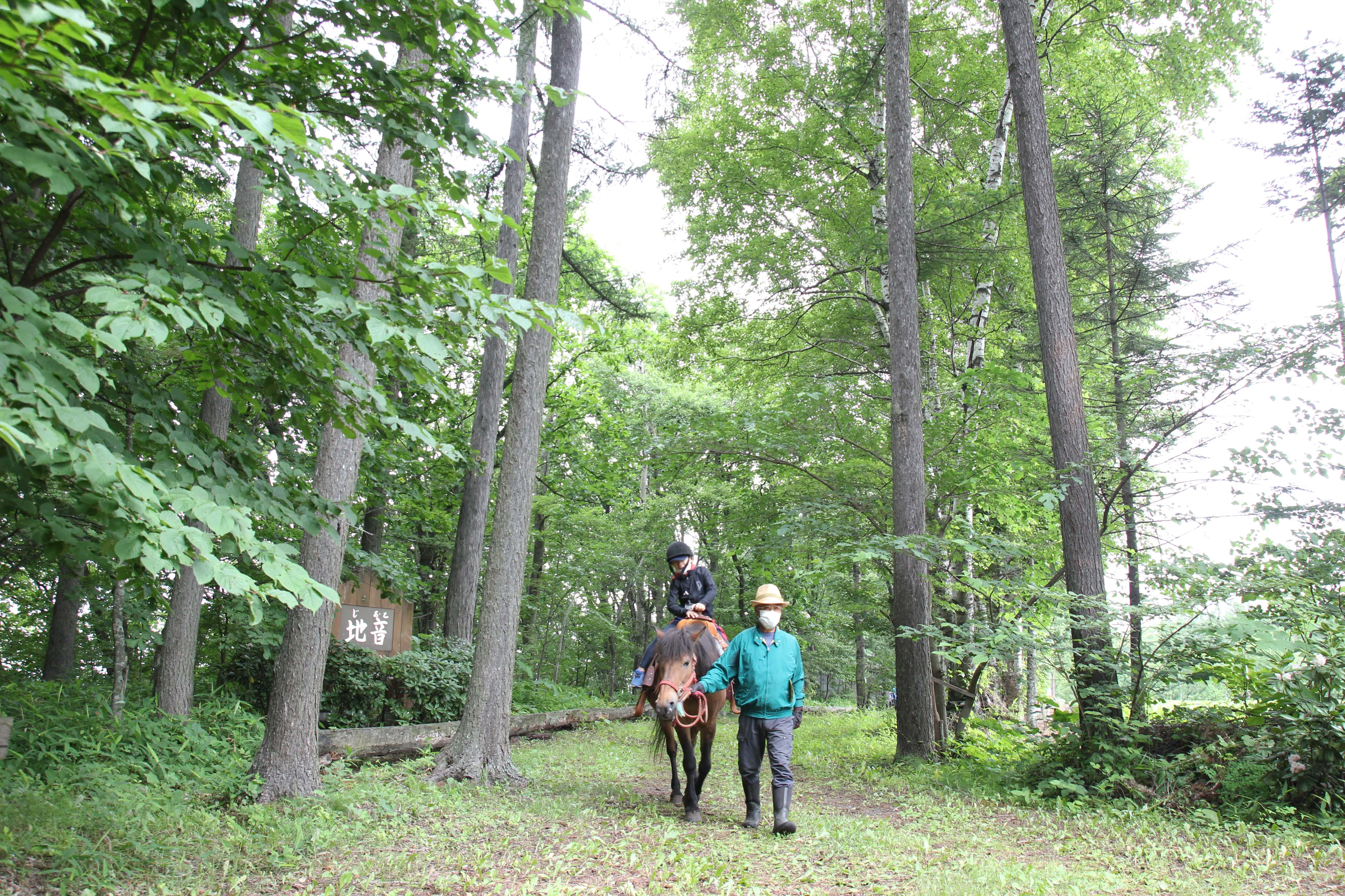 森を楽しみ、森から学ぶ